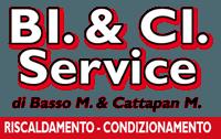 BI & CI SERVICE